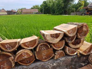 Drogen van het hout
